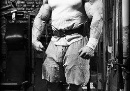 Muskelaufbau Ernährung – Innereien als Nährstoffspender