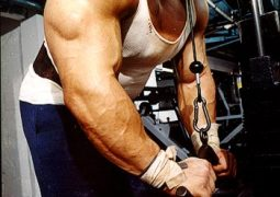 Bodybuilding Training – Tipp 8