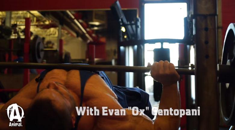 In der Sporttasche von Evan Centopani
