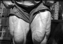 Kniebeugen – Tipps vom Experten – korrektes Beintraining
