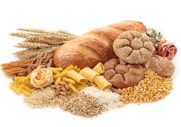 Kohlenhydrate – Grundnährstoff für den Masseaufbau