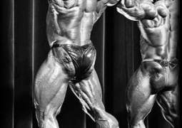 Ohne Strategieplan an die Bodybuilding Spitze