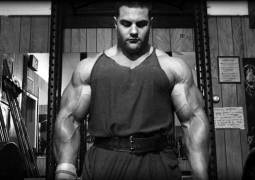 Omega-3 Fettsäuren + Muskelaufbau