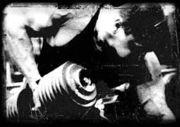 Animal Stak – Einnahme, Wirkung, kaufen