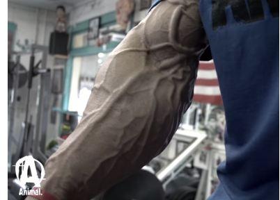 Trainingstechnik für Fortgeschrittene
