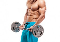 Masseaufbau Tipps für die Arme – Bizeps und Trizepstraining