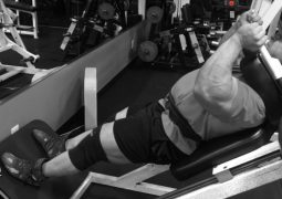 Beintraining mit John Jewett DoggCrapp Training