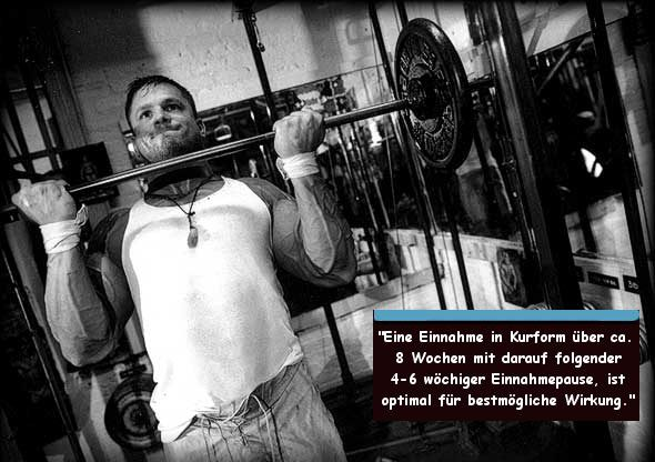 Carnosin verantwortlich für Muskelaufbau Leistungssteigerung