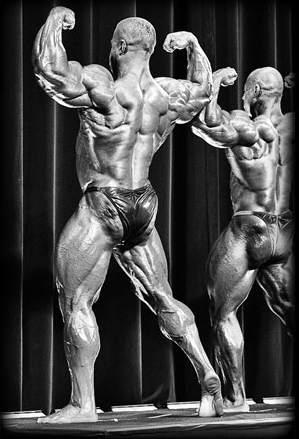 Meisterschafts Vorbereitung im Bodybuilding