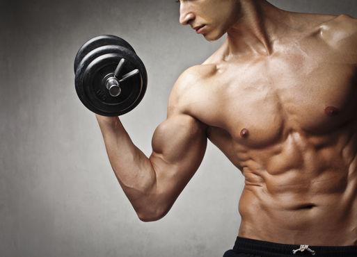 L-Arginin für den Aufbau von Muskulatur