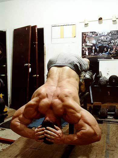 Muskelaufbau Rückenstrecker
