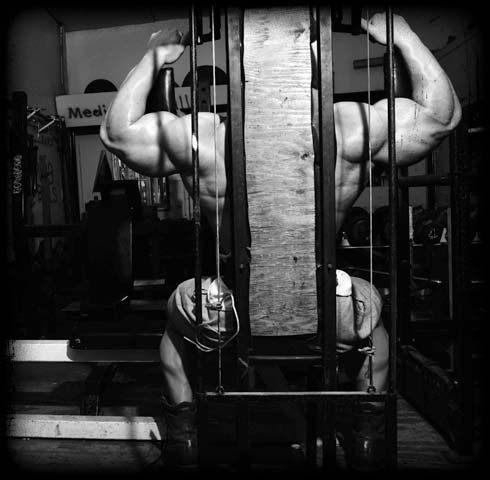 Negativ Training exzentrische Bewegungen