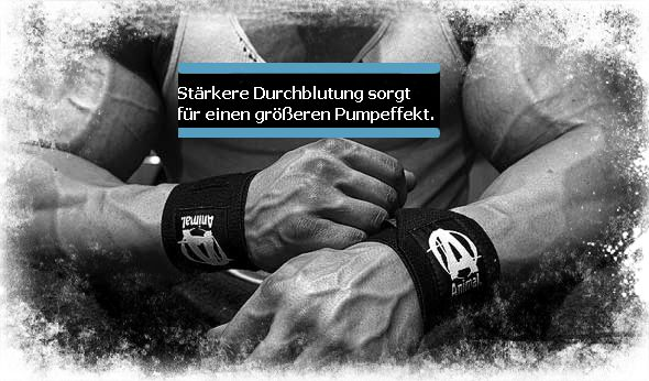 Leistungssteigerung durch Stickoxid beim Bodybuilding und Ausdauersport