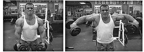 Schulterübung Kurzhantel Seitheben