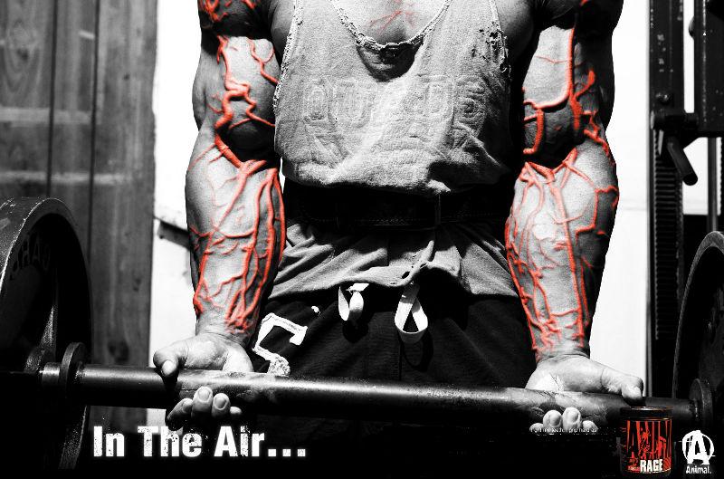 Masseaufbau Training Bodybuilding Blog