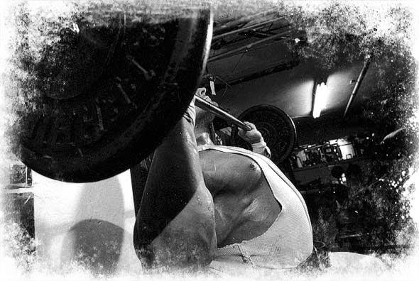 Mahlzeiten Diätphase Bodybuilder