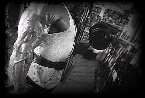 Universal Muskelaufbau - Einnahme Wirkung kaufen